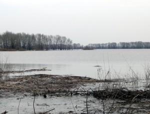 алёшеникин затон половодье река Самара